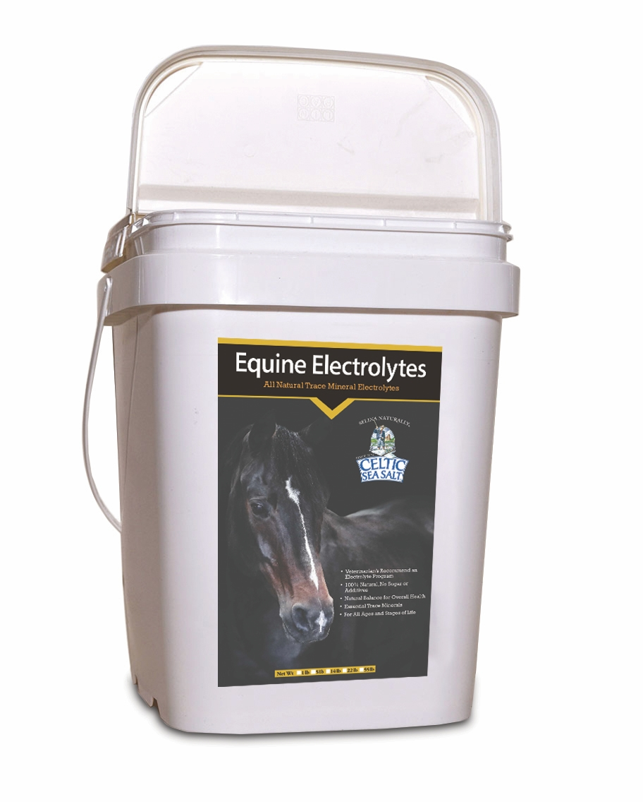 Equine Salt 14lbs Tub