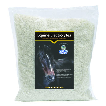 Equine Salt 5lbs Bag